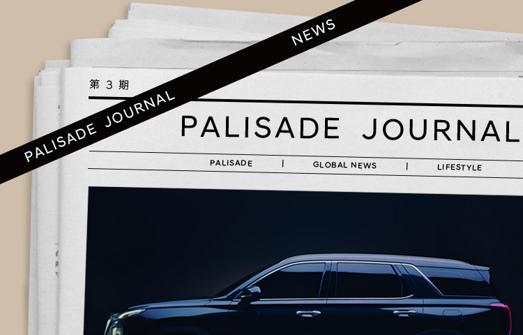 PALISADE JOURNAL | 打开电视,看「现代」